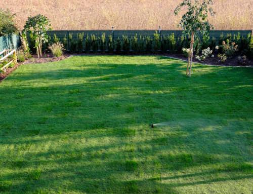 Ein Zeitraffer – Das Gartenprojekt